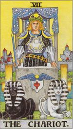 daily tarot card - the chariot